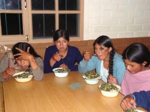 Internados Cocapata 1 Bolivia