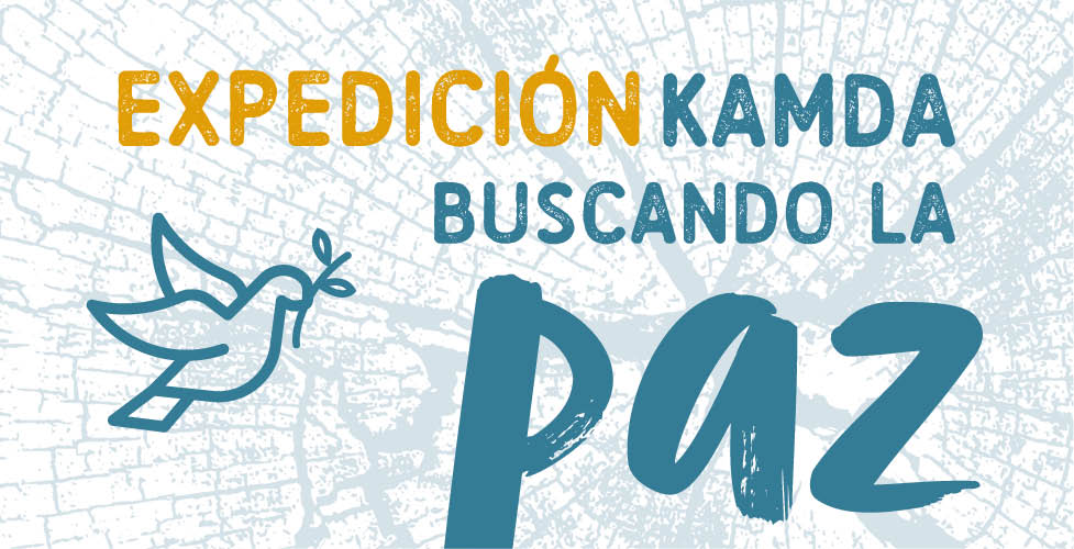 banner web paz