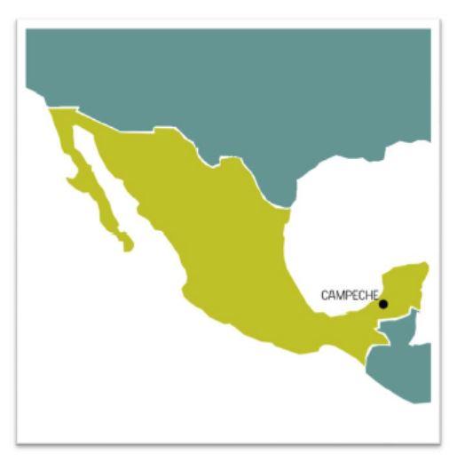 1México