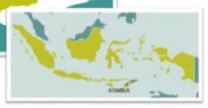 1indonesia